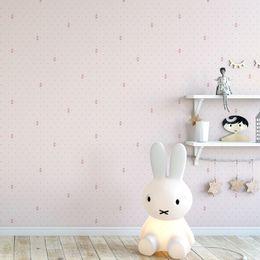 papel-de-parede-sapatilha-bailarina-poa-rosa-claro